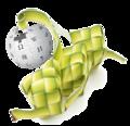 Aidilfitri Wiki 2.png