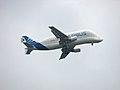 Airbus Beluga 3.jpg