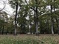 Aire de repos de La Loupière (Béon, Yonne, France) - 3.JPG
