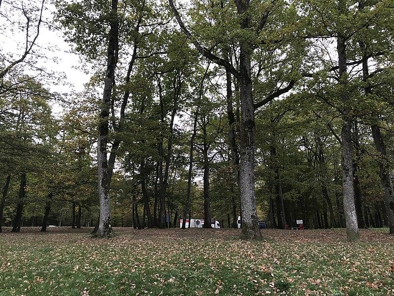 Aire de repos de La Loupière (Béon, Yonne, France) en octobre 2017.