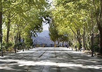 Alameda del Tajo.jpg