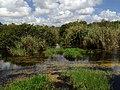 Alligator Pass - panoramio.jpg