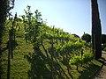 Amboise – château, jardins (04).jpg
