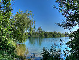 Ampersee