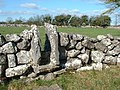 An Irish Gate - geograph.org.uk - 101354.jpg