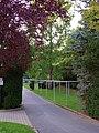 An der Gottleuba, Pirna 123963732.jpg
