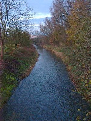 Angel (river) - Angel near Münster Wolbeck