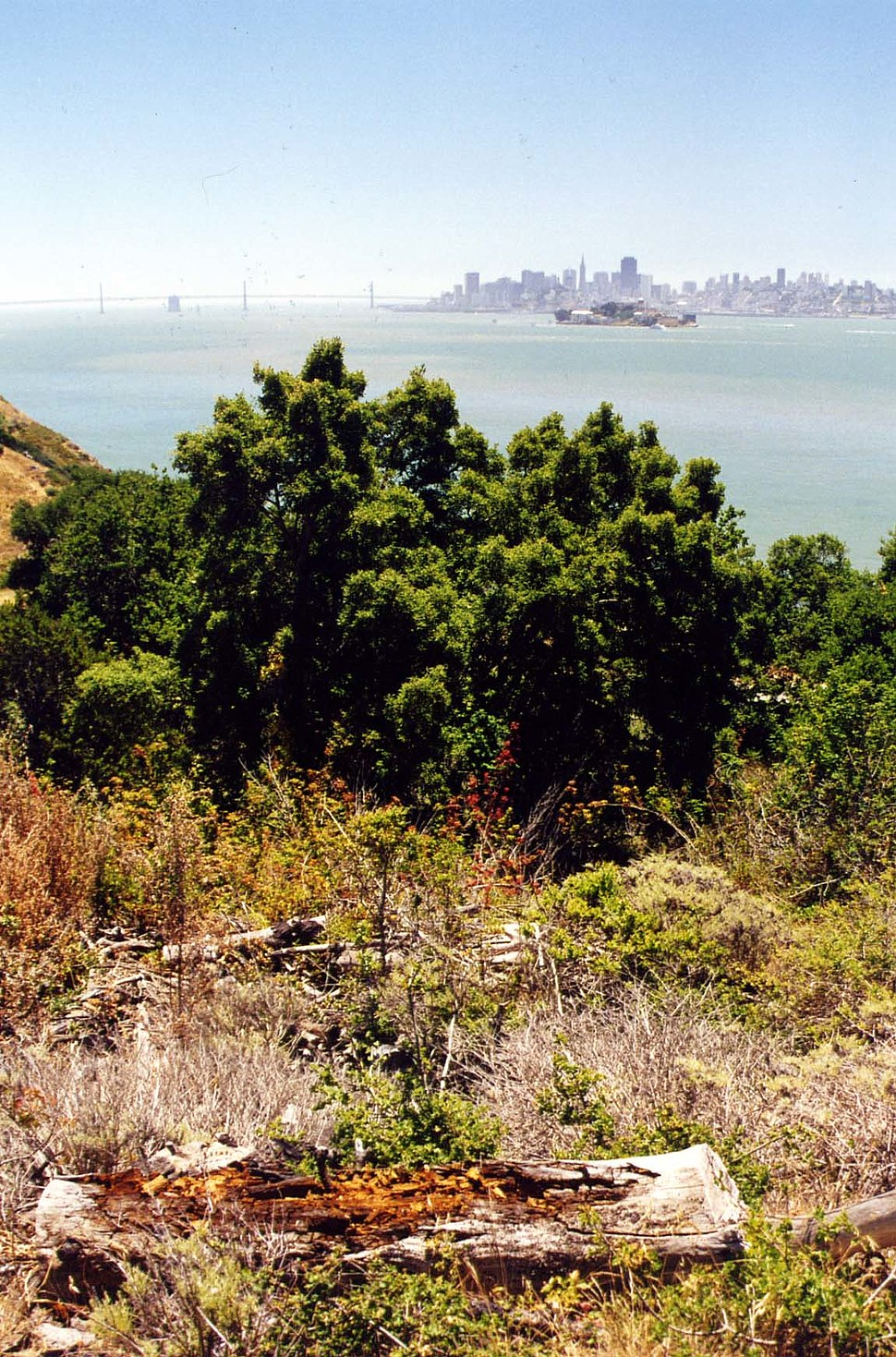 Angel Island, SF