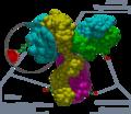 Antibody-drug conjugate.png