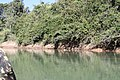 Araguainha - State of Mato Grosso, Brazil - panoramio (1035).jpg