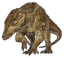 K Dragon Lizard Araripesuchus - Wikipe...