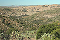 Aravaipa Canyon Wilderness (9415162348).jpg