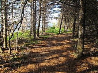 Arisaig Provincial Park provincial park in Nova Scotia