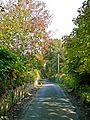Ashday Lane (2944578327).jpg