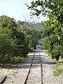 At Pardes Minkov - The Tarazina Tracks P1220091.JPG