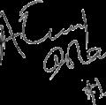 Atif-aslam--transparenet-signature.png