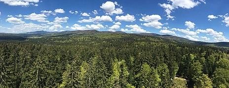 Aussicht vom Baumturm, Nationalpark Bayerischer Wald.jpg