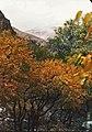 Autumn-Darabad-1987-Zenit122-H.Jafari-Analog Pictuer - panoramio.jpg