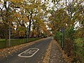 Autumnal Station Road - geograph.org.uk - 1051602.jpg