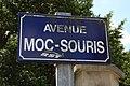 Avenue Moc-Souris à Saint Rémy lès Chevreuse le 22 mai 2013 - 6.jpg