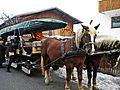 Axams-cavalli 2.jpg