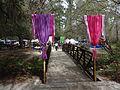 Azalea Festival 2015 34.JPG