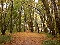 Bagrationovsky District, Kaliningrad Oblast, Russia - panoramio (26).jpg