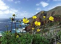 Baja coast.jpg