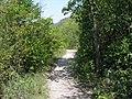 Bakota path.JPG