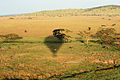 Balloon Safari 2012 06 01 3129 (7522676968).jpg