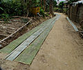 Bamboo-Harvesting,-Mai-Chau,-Vietnam.jpg