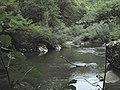 Banat,Nera Canyon - panoramio (48).jpg
