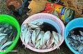 Bandar Abbas Fish Market 2020-01-22 05.jpg
