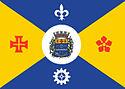 Bandeira de Barueri