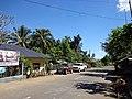 Barangay Haguimit, La Carlota City, Negros Occidental, Philippines - panoramio (6).jpg