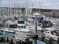 Barbican Marina, Plymouth - geograph.org.uk - 758638.jpg