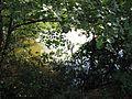 Barbora (rybník), cedule.jpg