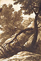 Bartolomeo Torregiani - Wooded Landscape - Google Art Project.jpg