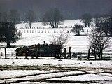 Bastogne (6).jpg