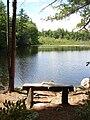Bear Brook State Park - Beaver Pond.JPG