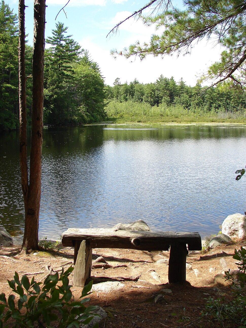 Bear Brook State Park - Beaver Pond