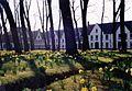 Begijnhof Brugge2.jpg