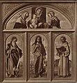Bellini - San Giovanni Battista, San Girolamo, San Francesco d'Assisi, Madonna con Bambino tra sant'Elena e santa Veronica, inv. 20, opera distrutta nel 1945.jpg
