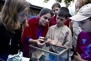 Natur- und Tierpark Goldau - Pupils observe a common toad.