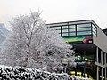 Biblioteca Calliano Scuola neve.jpg