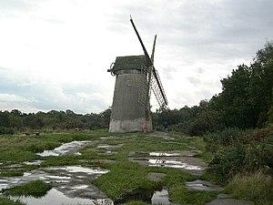 Bidston Hill