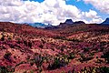 Big Bend Desert (4687103314).jpg