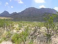 Big Bend National Park PB112594.jpg