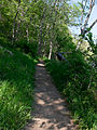 Billy Goat B Trail 3.jpg