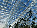 Biosphere 2 Roof - Flickr - treegrow (8).jpg